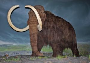 Blog Mammoth